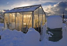 Fool-Proof Tips For Successful Winter Gardening