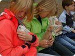 Holten - Kinderboerderij Dondertman met boerderijdieren en een heerlijke speeltuin. Niet te groot dus erg geschikt voor jonge kinderen. Je mag er zelfs picknicken!