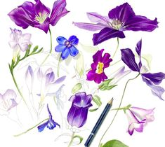 Billy Showell (@billyshowell) | Twitter Watercolour, Watercolor Paintings, Botany Illustration, Unusual Flowers, Online Tutorials, Natural Forms, Learn To Paint, Acrylics, Art Lessons