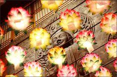 Celebrate Buddha's birthday with lotus lanterns - Buddhachannel