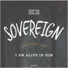 hE IS sovereign OVER EVERY STEP I AM ALIVE IN HIM. GLORIFY365