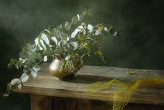 Image result for photography still life flowers