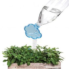 """Rainmaker Plant Watering Cloud. Attach this little cloud to any soda or water bottle and you have an instant watering """"can"""" for your plants. Adorable!"""