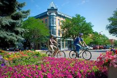 Pick your own adventure in Fort Collins, Colorado. This northern Colorado destination has plenty of action for everyone. Colorado City, Moving To Colorado, Colorado State University, Living In Colorado, Colorado Springs, Houses In Denver Colorado, Loveland Colorado, Colorado Winter, Visit Colorado