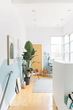 Planter Banter: 4 Tips for Finding the Perfect Plants (and Planters) for your Home - Paper and Stitch