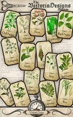 Spice Labels Jar Labels Tags instant download by VectoriaDesigns Herb Labels, Spice Jar Labels, Spice Jars, Printable Images, Printable Labels, Printables, Bottles And Jars, Apothecary Bottles, Herbs List