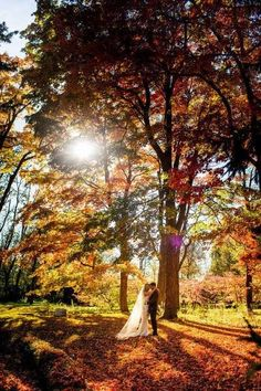 Use natural surroundings for your fall   wedding backdrop and other great ideas from Real Simple!