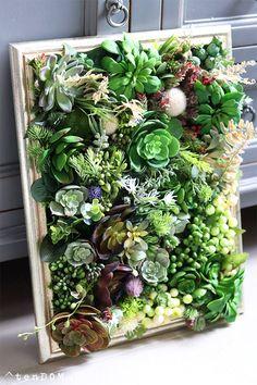 Trees To Plant, Terrarium, Plants, Home Decor, Succulents, Terrariums, Room Decor, Tree Planting, Home Interior Design
