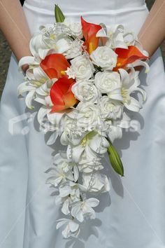 Amazing Orange and White Cascading Bridal Bouquet Lilies & Roses wedding bouquets with white roses … Lily Bouquet Wedding, Cascading Wedding Bouquets, Cascade Bouquet, Fall Bouquets, White Wedding Flowers, Wedding Flower Arrangements, Bride Bouquets, Floral Wedding, Flower Bouquets