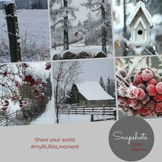 Happy Boxing day to all of you. Hope your Christmas was full of good cheer.  Today we're sharing a winter snapshot of our world and sending out rural wishes.  #RURAL #magazines . . . . . . http://ift.tt/2hh5WRS Visit www.ruralmag.com a free online magazine for #midlife women. It's not where you live it's how.