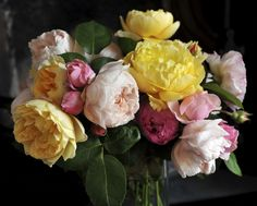 """Like peonies, garden roses are available in a variety of pastel and coral hues. They also have """"almost identical petals that mirror the peony's iconic 'powder-puff' petal,"""" says Eric Buterbaugh, celebrity florist and Chief Floral Designer of The Bouqs. The likeness is especially evident in old-fashioned English roses when they are in bloom.   - HouseBeautiful.com"""