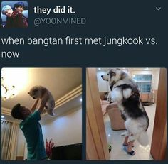 BTS | army since Just one day era. Very true :')