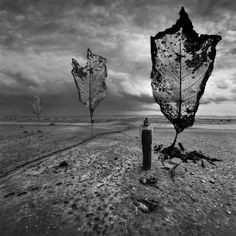 Leaf me alone by Kleemass.deviantart.com on @deviantART