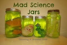 Glowing Mad Science Jars ~ Growing A Jeweled Rose Alien Halloween, Halloween Science, Halloween Party, Mad Scientist Halloween Costume, Zombie Party, Halloween 2020, Halloween Activities, Indoor Activities, Science Activities