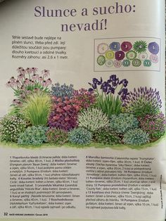 Flower Garden Design, Flower Beds, Garden Planning, Garden Plants, Landscape Design, Pergola, How To Plan, House Styles, Flowers