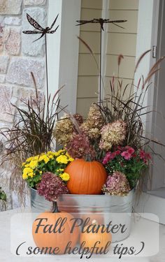 I repurposed my summer planter! Kept the grasses I planted in the spring and then filled it in with pumpkins, mums and some hydrangeas (to fill in the bare spots). My favorite planter that I've done yet!