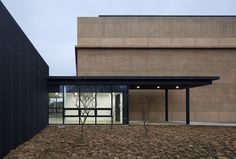 Steel-clad clerestory windows protrude from concrete badminton hall by JHW IROJE Architects
