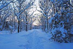 заставка на экран компьютера зима: 13 тыс изображений найдено в Яндекс.Картинках