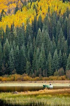 Just Fishin', Paonia State Park near Kebler Pass, CO and Smith Fork Ranch| Wayne Boland via Flickr