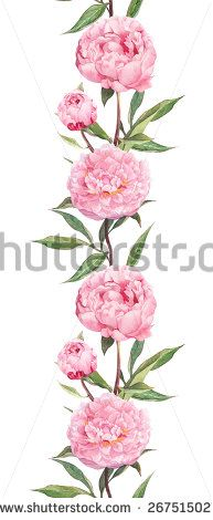 Pink flower (peony). Seamless floral border strip. Watercolor
