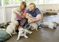 Marley and Me with Jennifer Aniston and Owen Wilson. They had such great chemistry! Great movie :')