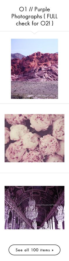"""""""O1 // Purple Photographs { FULL check for O2! }"""" by call-me-taylor ❤ liked on Polyvore featuring backgrounds, pictures, photos, purple, art, fillers, scenery, flowers, pink and home"""