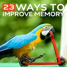 23 Ways to Improve Your Memory- and sharpen your brain.