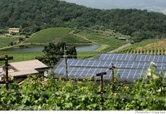 The Shafer Vineyards is a 100% solar powered company.