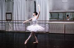 Repetiţii pentru reprezentaţia spectacolului de balet din 26 februarie/ Rehearsals for the ballet performance on February 26 Ballet Performances, Project Steps, Balerina, Photo Sessions, Ballet Skirt, Dance, February, Fashion, Moda
