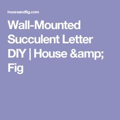 Wall-Mounted Succulent Letter DIY | House & Fig