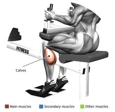 CALVES -  SEATED CALF RAISE MACHINE