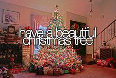 Have a beautiful Christmas tree. My trees are always gorgeous