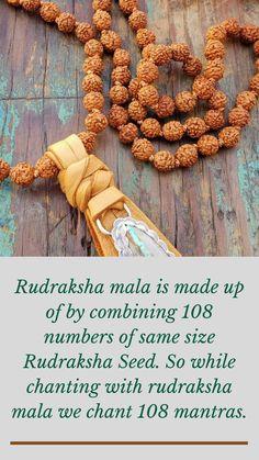 Indoor Bamboo, Crochet Necklace, Meditation, Spirituality, Suitcase, Spiritual, Zen