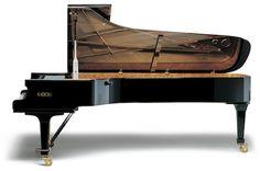 Fazioli-308 Best Piano, Piano Room, Design Blogs, Piano Music, Orchestra, Musical Instruments, Grand Pianos, Chicago, Interior Design