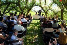 Laube, Ceremony, Moschti Stäfa Location, Dolores Park, Places, Wedding, Travel, Valentines Day Weddings, Viajes, Weddings, Trips