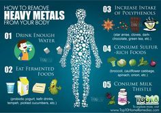 How to Remove Heavy Metals from Your Body | Top 10 Home Remedies