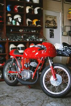 speedmilk:  I have one of these, this bike put some fire back...