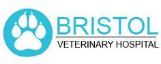Veterinary Services, Veterinary Care, Vet Help, Vet Clinics, Healthier You, Pet Health, Bristol, Happy Life, Wordpress
