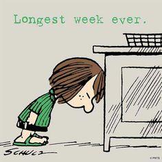 Longest week ever