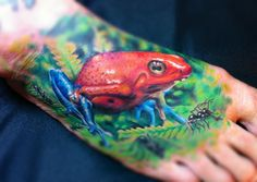 tattoos of tropical birds | ... Tropical Frog Tattoo - Karl Berringer | The Best Animal Tattoos
