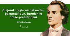 Mihai Eminescu Me Quotes, Motivational Quotes, Funny Quotes, Inspirational Quotes, Qoutes, Movie Co, Writers And Poets, Amazing Quotes, True Words