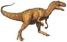 allosaurus - Jurassic (150 - 145 mln)