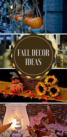 Fall decor ideas for the home - basic and inexpensive