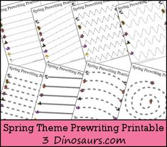 3 Dinosaurs has a FREE set of Spring Themed Prewriting Printables that include:  	Single thin dashed lined 14 pages 	Thick solid line 7 pages
