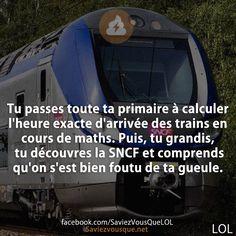 Tu passes toute ta primaire à calculer l'heure exacte d'arrivée des trains en cours de maths. Puis, tu grandis, tu découvres la SNCF et comprends qu'on s'est bien foutu de ta gueule. | Saviez-vous que ?