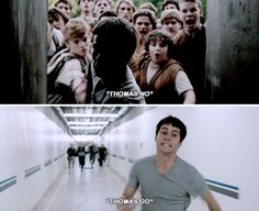 The two sentences we were screaming throughout the Maze Runner.