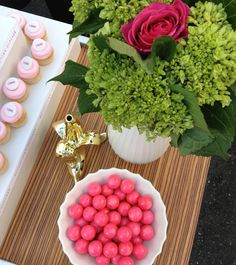 jonathan adler and georgetown cupcake at the bare minerals at the launch party
