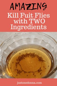 You can kill fruit flies easily with just two ingredients you already have in your home. Works every time! A non-toxic, effective method to kill fruit flies using apple cider vinegar and dish soap. Fruit Flies In House, Homemade Fruit Fly Trap, Diy Fruit Fly Trap, Fruit Fly Traps, Diy Gnat Trap, Gnat Traps, Homemade Cleaning Products, Natural Cleaning Products, Hacks