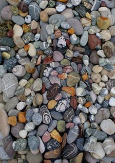 Expertly painted on body paint,..model blends right in with the stony ground.