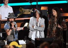 Gus the Wonder Kitty photo bombs Johnny Depp, Steven Tyler and Joe Perry at the 2012 MTV Movie Awards.